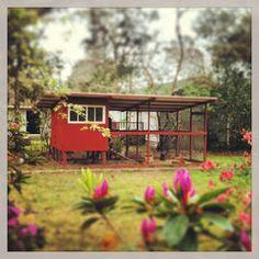 Modern garden custom chicken coop for sale san diego los for Fancy chicken coops for sale