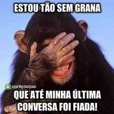 Exo Memes, Funny Memes, Jokes, Meme Rindo, Cute Love, Funny Photos, Messages, Facebook, Top Imagem