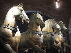 Cavalli by Mi-Wu, via Flickr