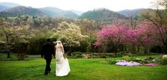 Weddings on the Mountain Magnolia Inn Grounds in Hot Springs, NC. $1070 + room rates (~150 per night) for 2 nights. Pretty beautiful. Includes photographer, flowers, champagne toast, 5 course dinner, wedding cake, and breakfast both days. Additional nights available for discount.