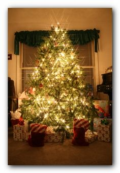 I believe this year we will get our babies a real tree.  So pretty.