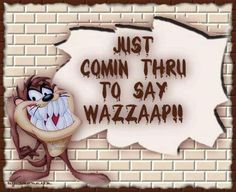 Taz and Sayings - Yahoo Image Search Results Looney Tunes Characters, Looney Tunes Cartoons, Funny Cartoons, Funny Jokes, Funny Shit, Funny Stuff, Hilarious, Seriously Funny, Really Funny