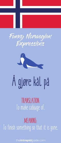 Norwegian Sayings and Idioms - Å gjøre kål på Good Morning Winter, Norway Language, Diabetes Treatment Guidelines, Norway Travel, Sunday Quotes, Health Facts, Health Quotes, Dog Snacks, Inspirational Videos