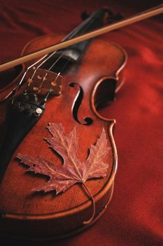 Colors of the violin