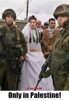 Israel is a War Criminal Elie Wiesel, Socialism, Oppression, Israel, Save Syria, Palestine History, Apartheid, Values Education, Behance