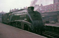 60008 Dwight D Eisenhower - Kings Cross Diesel Locomotive, Steam Locomotive, Station To Station, Steam Railway, Old Trains, Electric Train, British Rail, Speed Training, Train Car