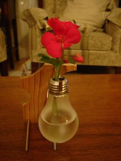 I want to try this! Good use for burnt out light bulbs