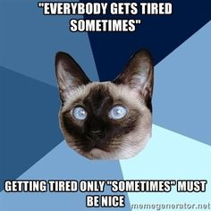 The feeling of not being tired is foreign to me...