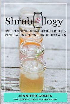 Learn to create refreshing, no-cook, homemade fruit & vinegar syrups for cocktails with this ebook! In it you'll learn in detail how even a handful of berries can be preserved with a bit of sweetener and vinegar into a syrup that can be mixed into a varie