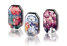 The Print Collection, Stella McCartney Perfumes (2011)