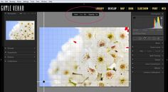 4 Lesser-Known New Features in Lightroom 5