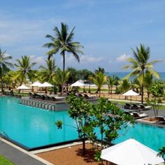 #centara #centaraceysands  #resorts #holidays Flights & accommodation in Sri Lanka from $679 per person ( land ) plus flights with Singapore Airlines  CENTARA CEYSANDS RESORT & SPA 7 Nights in a Superior Room Return airfares with Singapore Airlines Return private airport transfers BONUS OFFERS: Breakfast Daily Lunch OR Dinner Daily Complimentary upgrade to the next available room category 3 hours of open bar during lunch OR dinner. Open bar includes standard drinks such as non-alcoholic beer…