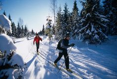 Winter sports activities; Cross country skiing