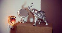 In love about elephant. #elephant #oriental
