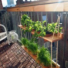 41 cozy and beautiful green balcony ideas - ., 41 cozy and beautiful green balcony ideas - # balcony ideas # Although old with strategy, a pergola may be encountering a present day renaissance these kind of days. Apartment Balcony Decorating, Apartment Balconies, Apartment Walls, Apartment Projects, Apartment Design, Balcony Plants, Indoor Plants, Balcony Gardening, Outdoor Balcony