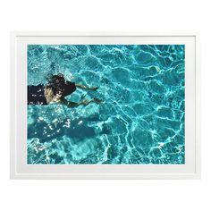 Swim Deep Printed Wall Art | Temple & Webster