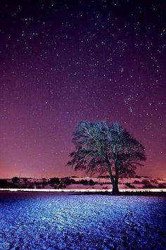 Starry night in England