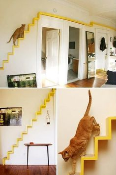 This is a great idea for all cat lovers. The stairs add a bold diagonal line adding movement as your eye follows it up or down. The bright yellow color provides a dramatic accent to the neutral room. and like OMG! get some yourself some pawtastic adorable cat apparel!