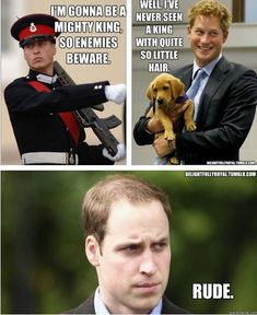 I love William and Harry, but this is too funny to pass up.