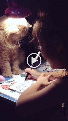 Cat and child draw together Animals And Pets, Funny Animals, Cute Animals, Cute Little Kittens, Cats And Kittens, Funny Cat Videos, Funny Cats, Child Draw, Animal Rescue Center