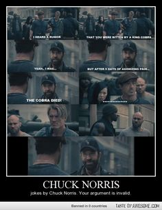 Chuck Norris jokes by Chuck Norris....I don't care what anybody else says, I love Chuck Norris. haha
