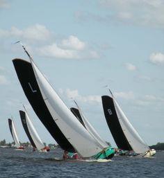 The #Netherlands - #Friesland - Skutsjesilen at the lakes in Friesland - Elahuizen