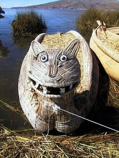 Boat Kitty, Lake Titicaca. You would have loved this.  This world is really awesome. The woman who make our chocolate think you're awesome, too. Please consider ordering some Peruvian Chocolate today! Fast shipping! http://www.amazon.com/gp/product/B00725K254