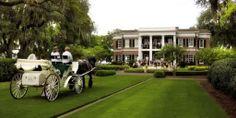 The Ford Plantation Savannah