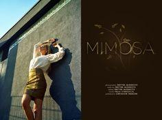 """Martyna Włodarczyk """"Mimosa"""""""