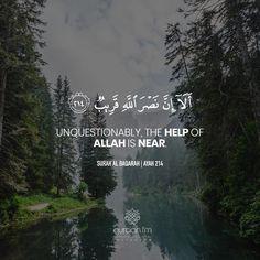 """Unquestionably, the help of Allah is near."" - [Surah Al Baqarah | Ayah 214] - Receive Quran Recitations via WhatsApp. WhatsApp your ""Name"" to +27745000222."
