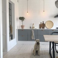 A Beautiful Southern Sweden Home (With An Adorable Pooch!) (my scandinavian home) Deco Design, Küchen Design, Interior Design, Cute Dog Pictures, Swedish House, Scandinavian Home, Minimalist Scandinavian, Cuisines Design, Kitchen Interior
