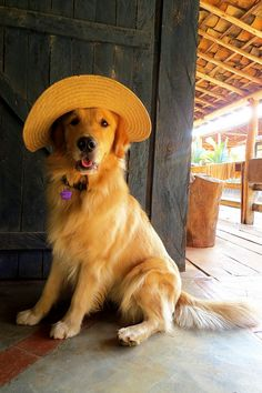 pretty girl in her straw hat