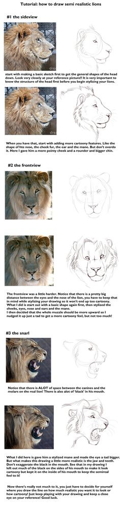 Semi realistic lion head tut by TorazTheNomad on deviantART