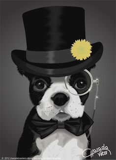 Constipated dog is not a sign of any serious problems but the problem should be addressed immediately as a measure. Boston Terriers, Constipated Dog, Coreldraw, Feel Good Pictures, Funny Animals, Cute Animals, Boxer And Baby, Dog Logo, Purebred Dogs