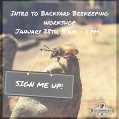 Last call!  Register today to join us on Saturday! Class materials and lunch count will be coming your way tonight. Curious about beekeeping or bees? Ready to take the plunge and start your own backyard hives? We are hosting a Backyard Beekeeping for the Absolute Beginner Workshop on Jan 28 9am - 1pm at @livecannerydavis Just $25 and we are providing farm fresh soup for lunch. No prior bee knowledge required! Registration link in bio or head to our FB page for more details.