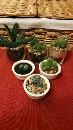 Check out this item in my Etsy shop https://www.etsy.com/uk/listing/509544776/needle-felted-succulents-and-cacti