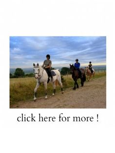 Book 8 or more people for a horse riding experience at Barleyfields Equestrian Centre in Derby and the hen goes free!! A fun experience that you and your friends will never forget – just quote BRIDEA!!