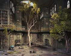 abandoned house with trees growing in the library.. would make a great treasure hunt *.*