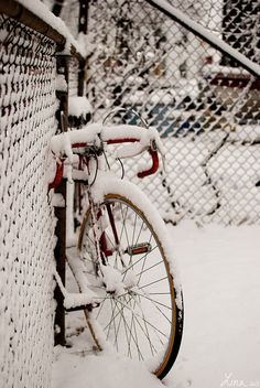 This reminds me of when I was 15 riding my 10 speed in the snow in Newark Delaware...