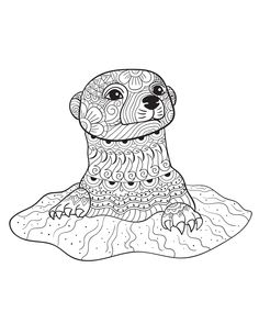 An Otter from ANIMALS - An Adult Coloring Book