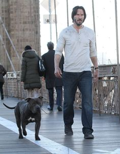 Keanu Reeves not sad and with a dog on the set of John Wick 2 in NYC|Lainey Gossip Entertainment Update