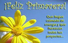 feliz-dia-de-la-primavera Welcome Spring, Morning Quotes, Spanish, Blog, Festiva, Facebook, Chocolates, Angels, Articles