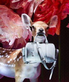 Sofia Coppola et Louis Vuitton investissent les vitrines du Bon marché Rive gauche
