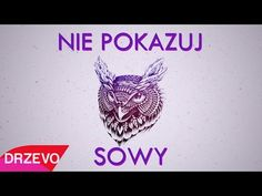 GeneralTV - NIE POKAZUJ SOWY (OFFICIAL VIDEO - Attention Parodia) - YouTube