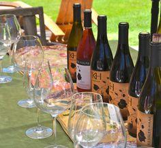 Kessler-Haak Wines