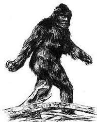The Legend Of The Jocassee Gorges Sasquatch Yeti Bigfoot, Bigfoot Sasquatch, Bigfoot Toys, Bigfoot Party, Bigfoot Pictures, Pie Grande, Feet Drawing, Aliens And Ufos, Mothman