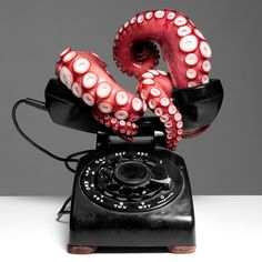 Octopus Telephone by Octopodal. Never wanted a phone so bad.