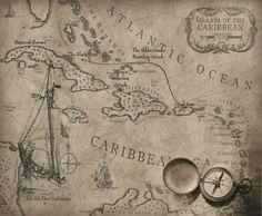 Love the antique maps
