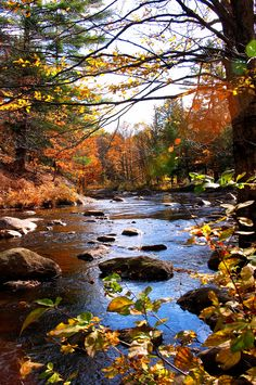 Fall in the Adirondacks | Fall in the Adirondacks by horsefeathers1
