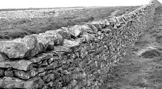 Murs mitoyens, juil. 2015